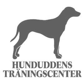 Hunduddens Träningscenter  Barbro Rydén -  Hundinstruktör