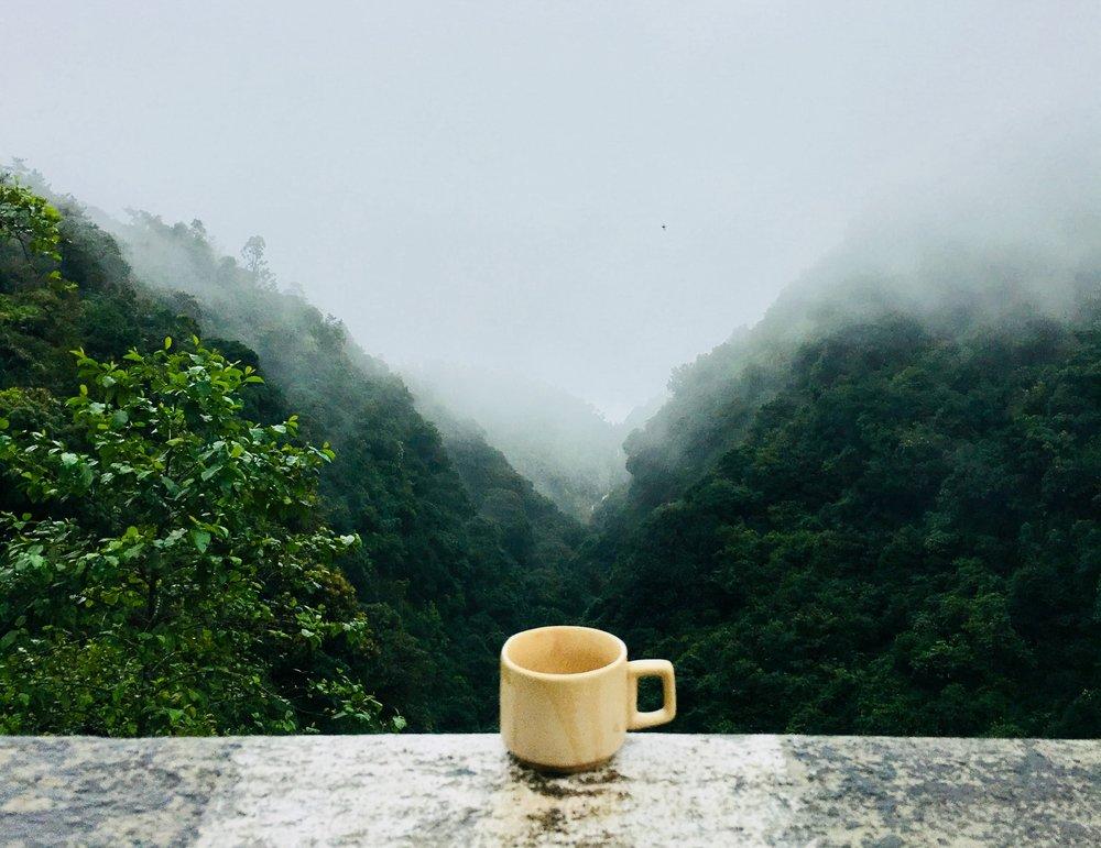 caffeine-coffee-cup-641038.jpg