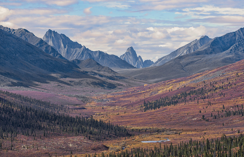 Tombstone mountains in Yukon by Chris Pepper