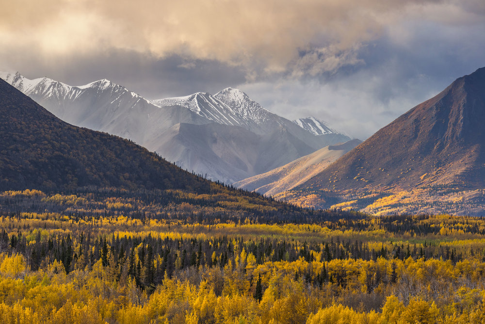 Yukon fall colours