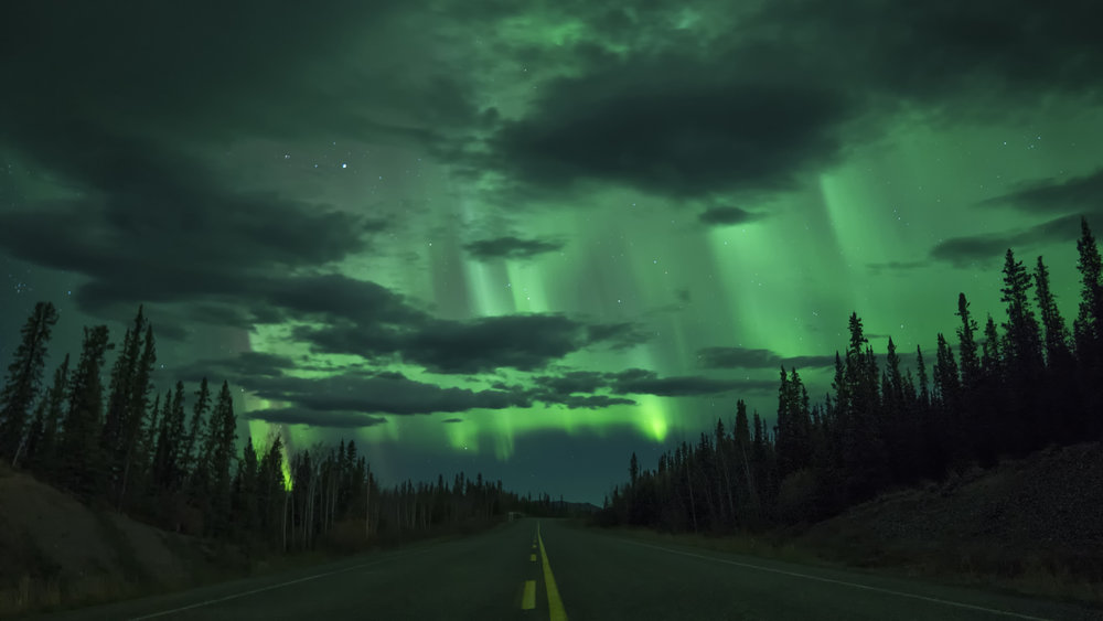 Northern lights above the road in Yukon by Chris Pepper