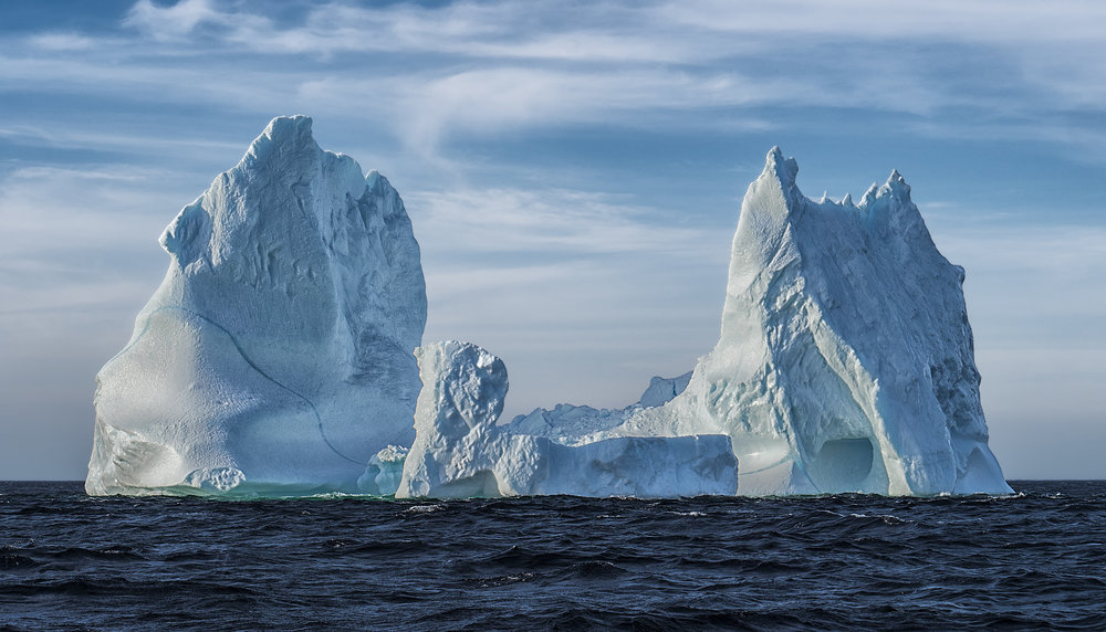 Newfoundland Icebergs North of 49 photography