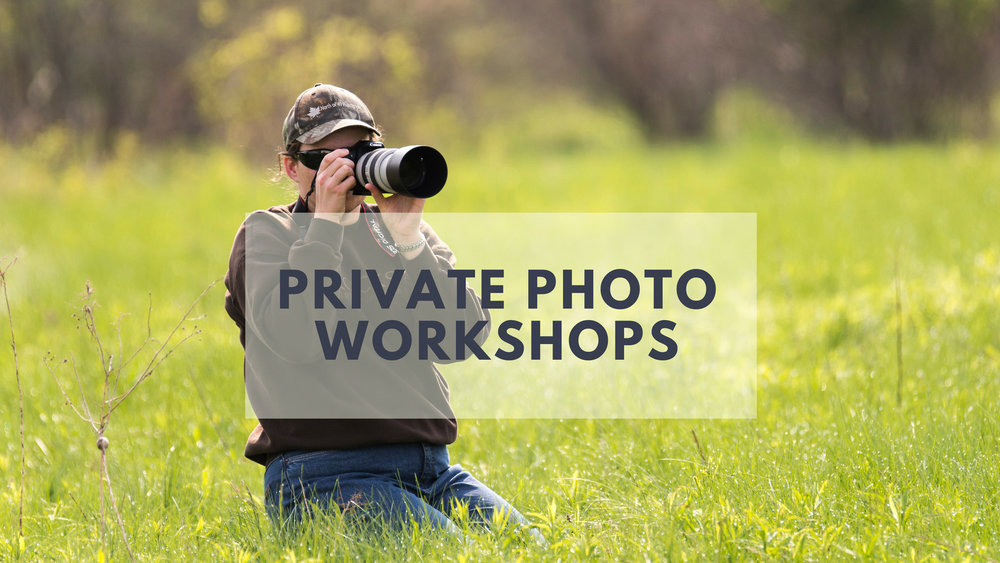 Private Photography Workshops