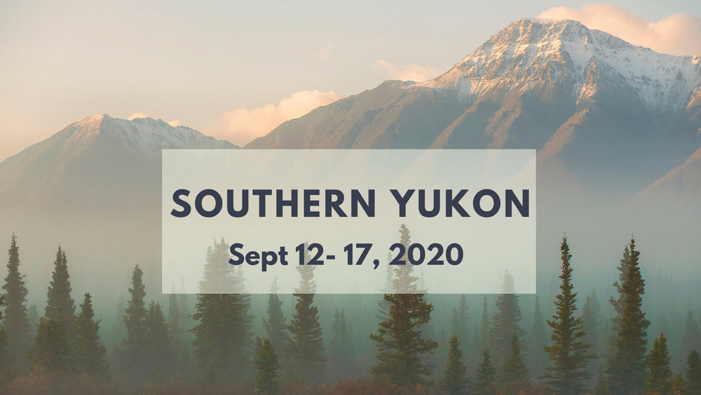 Fall Colours + Aurora Photo Tour in Yukon