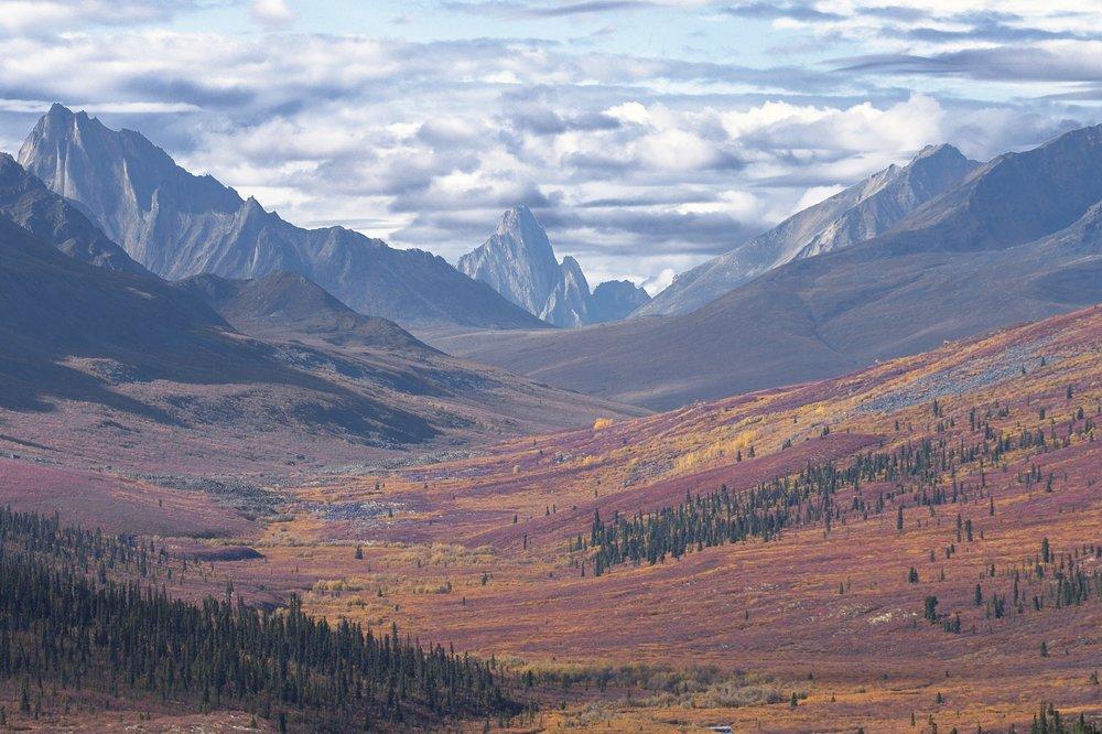 Yukon Photography Workshops