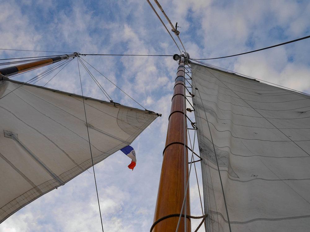 America 2.0 - Harbor Classic Lines
