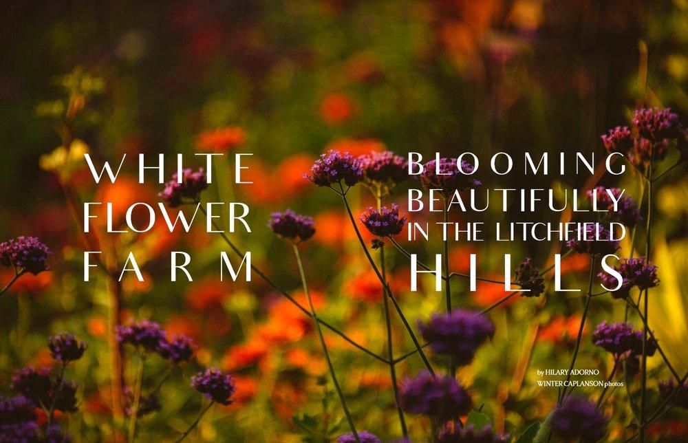 CFF-White-Flower-Farm.jpg