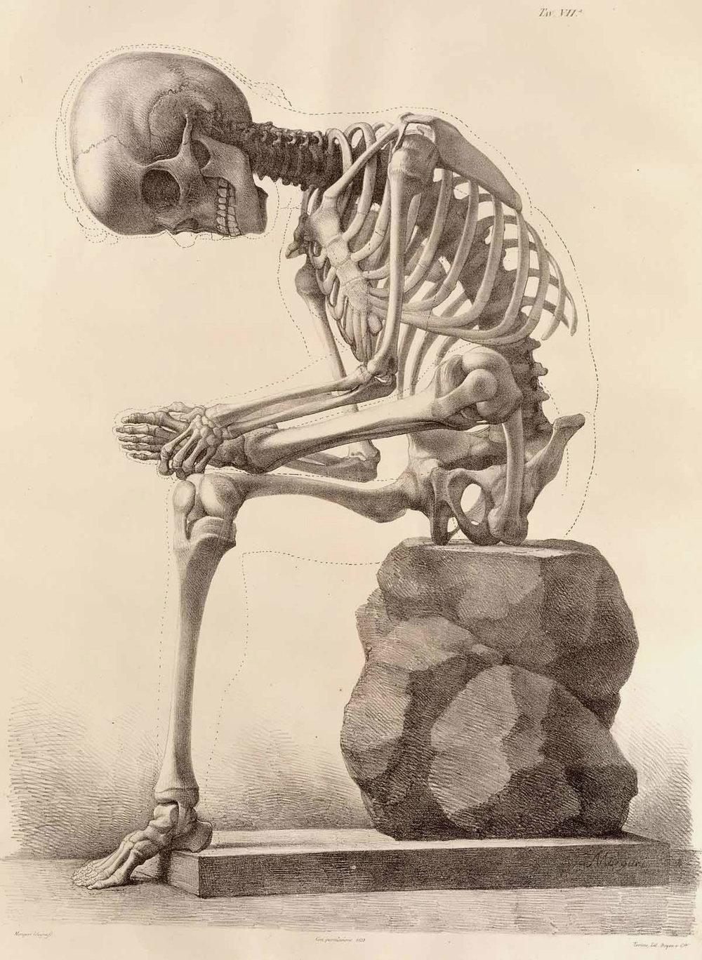 Foot old skeleton.jpg