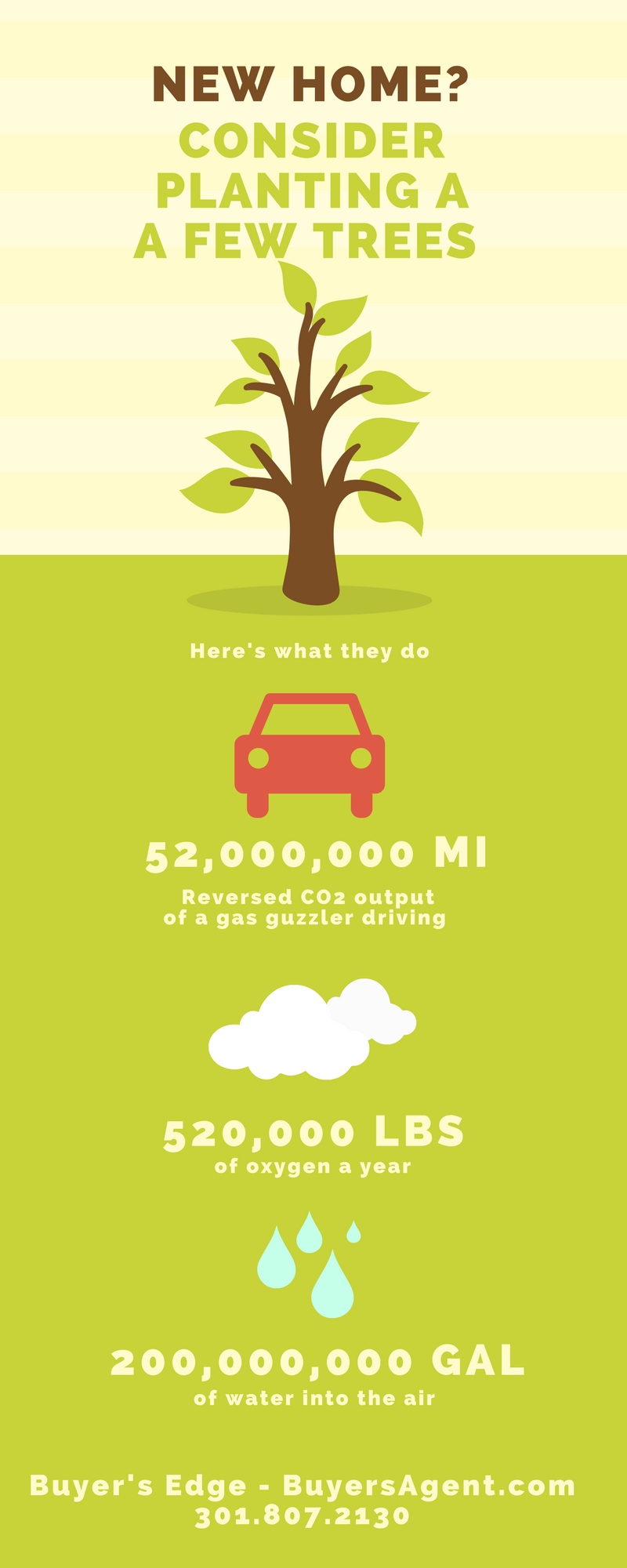 INFOGRAPHIC CANVA Plant a tree BuyersAgent.com.jpg