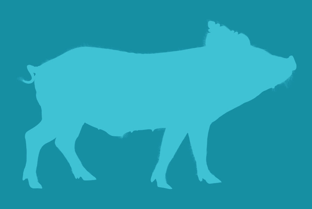 ANIMAL FARM - OPENING OCT. 4