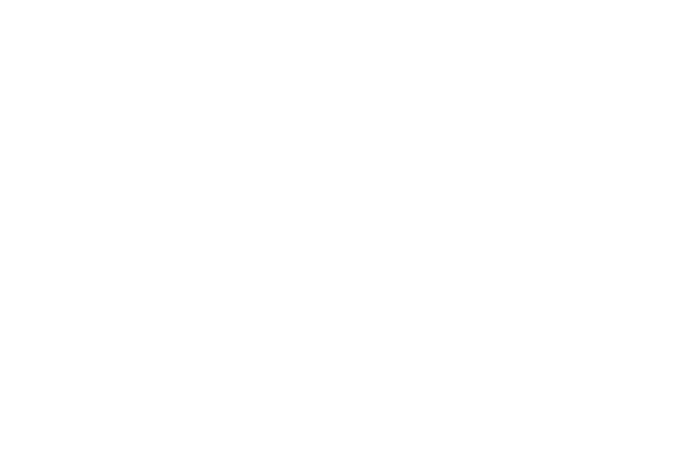 WEB SERIES FESTIVAL - WINNER BEST SUPPORTING ACTOR - 2018.png