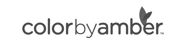 logo-client-colorbyamber.png