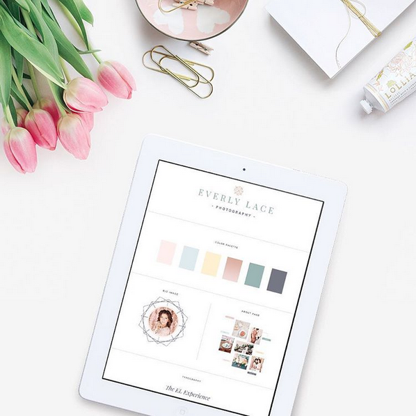 Seaside Creative used our styled image to showcase a style guide she created. So pretty!