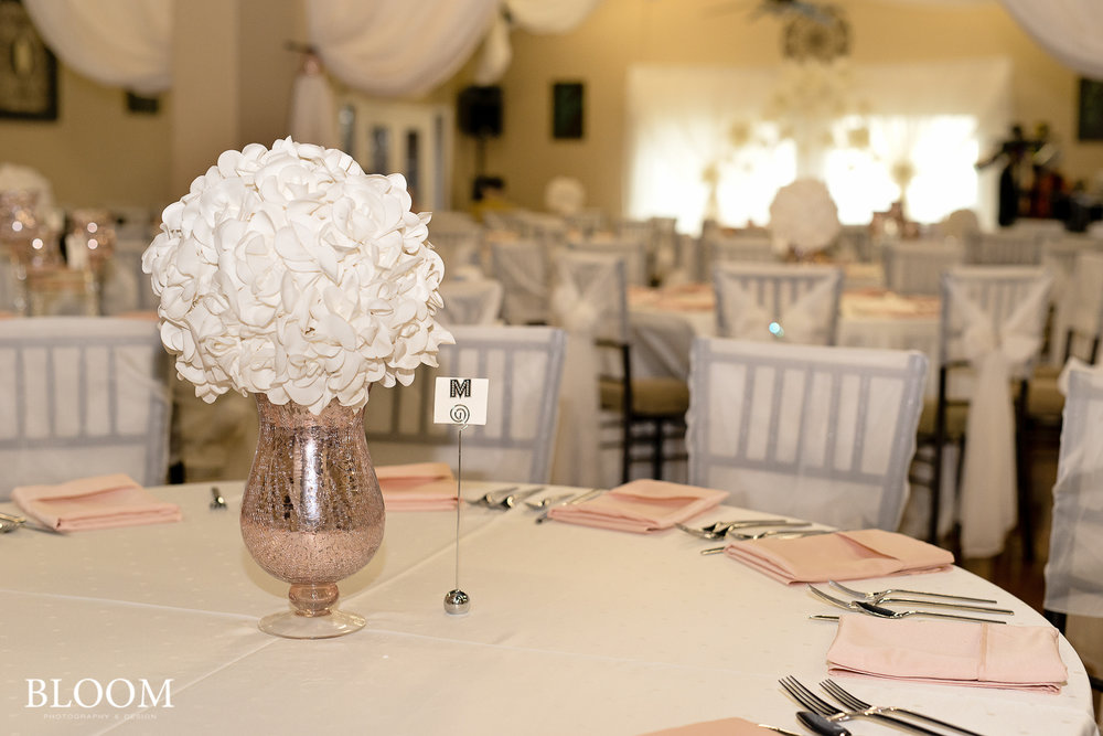 La_Fontana_Sprint_san_antonio_wedding_photographer_Bloom_111216_NMM_8982.jpg