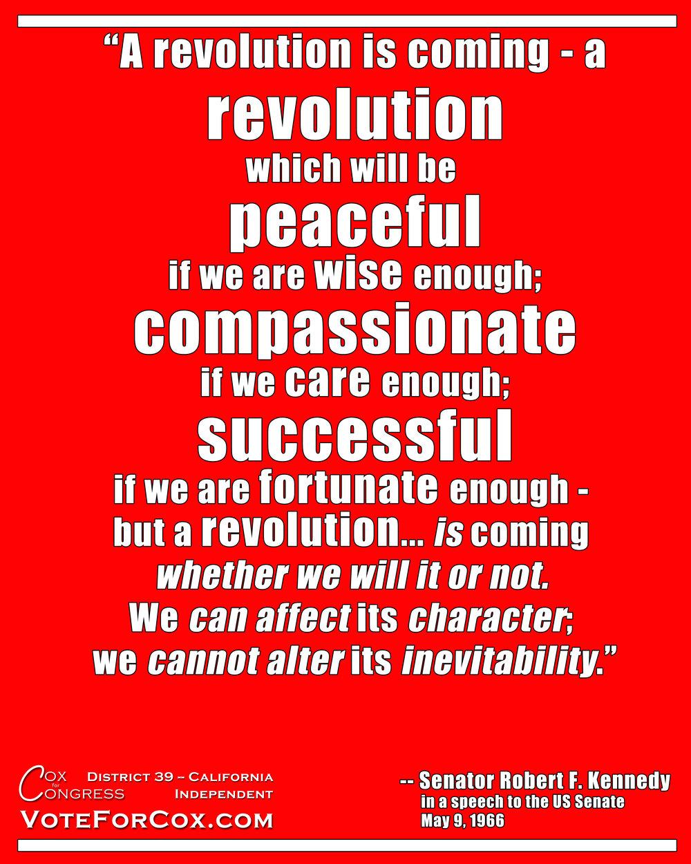 RFKRevolutionMeme.jpg