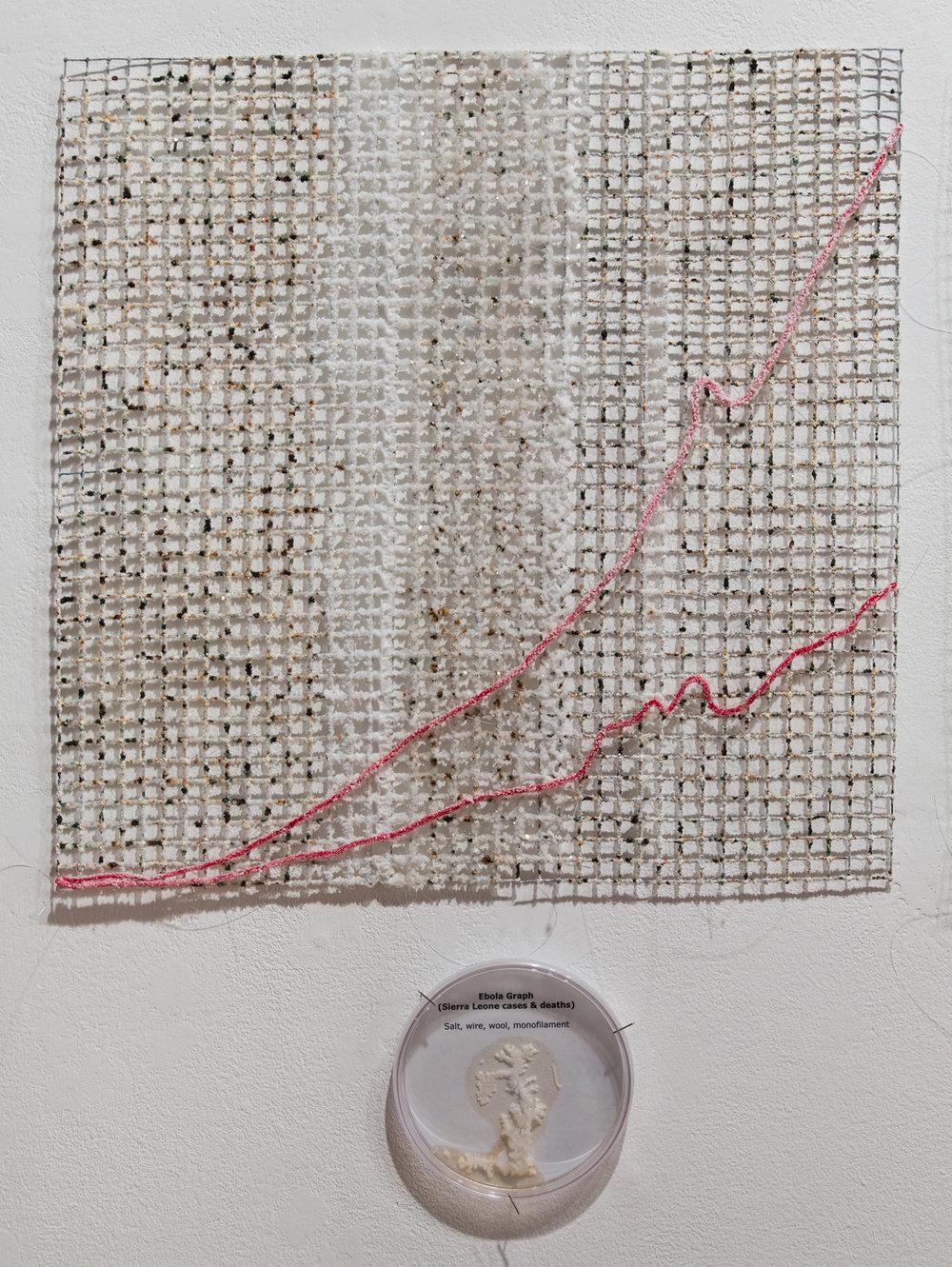 "Ebola Graph - Sierra Leone grown salt crystals, wool, wire, agar, halobacteria, agar, petri dish 20"" x 20"" 2015"