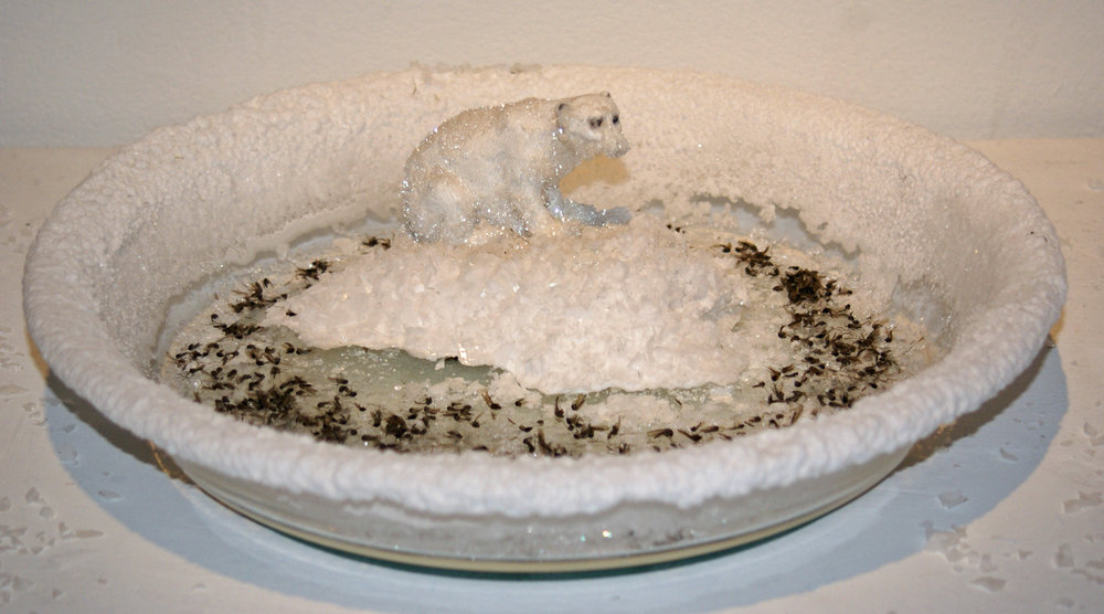"The Last Floe Mixed media with glass dish, ceramic bear, grown salt crystals, mosquitoes   10"" x 10"" x 3""  2007"