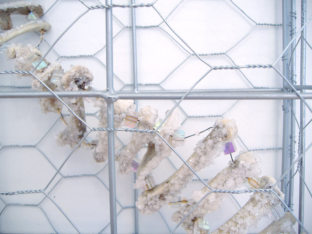 "Zoonosis   (detail) Chicken wire, chicken bones, beads, and grown salt crystals 68"" x 10"" x 5""  2006"
