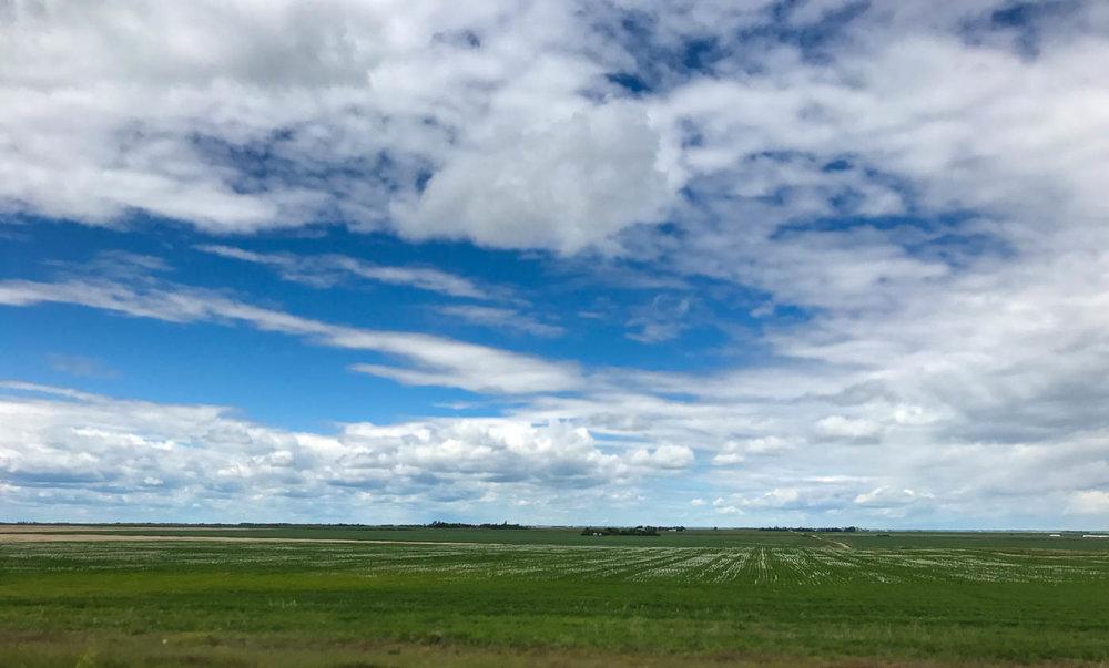 The prairie of Saskatchewan