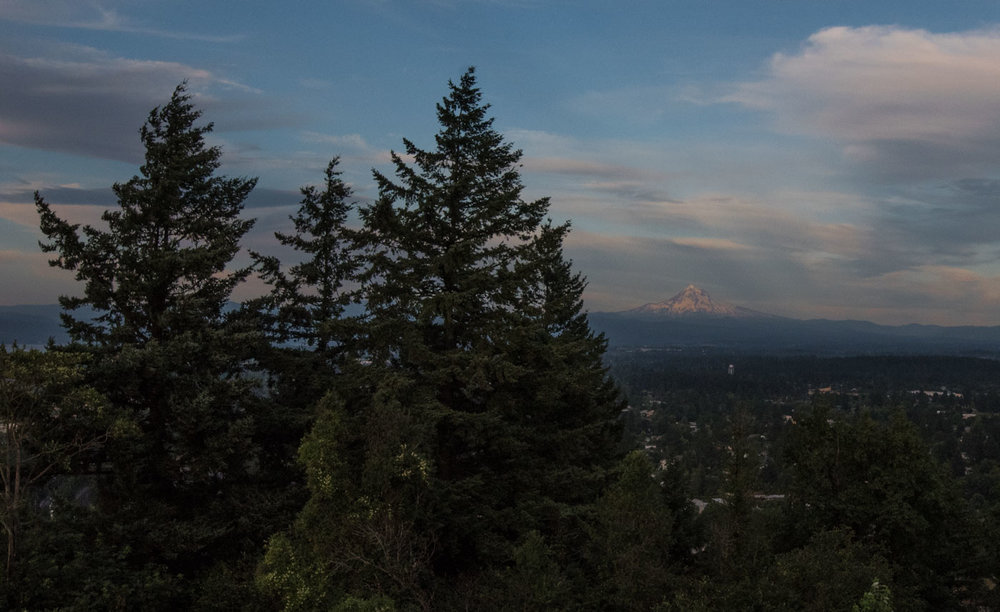 looking toward mount hood