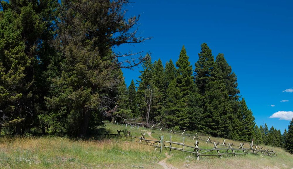 old cemetery of prospectors and loggers