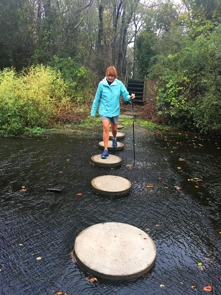 Walking the stepping stones