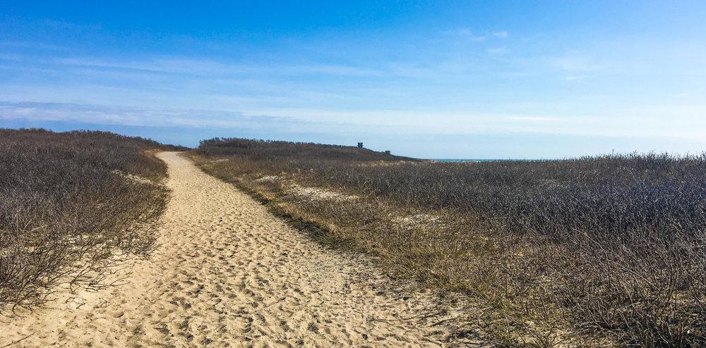Main trail on Gooseberry Island