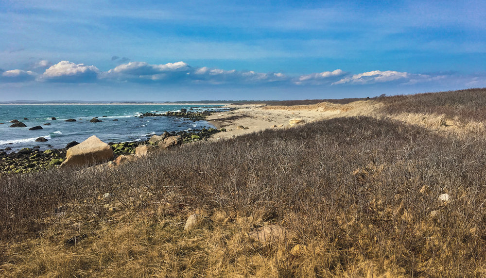 Looking back toward Horseneck Beach