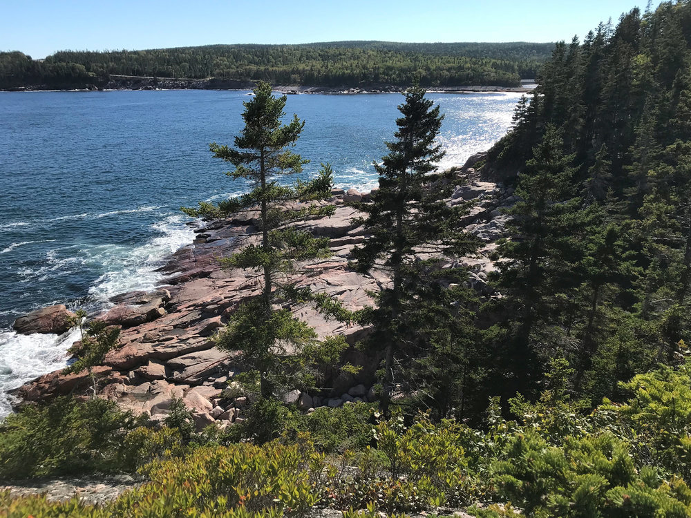 Along the Jack Pine / Coastal trail