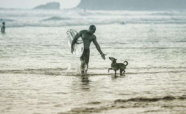 Gotta give some love to the local doggies who cruise around town.  These pups are clearly enjoying the paradise living! . . . #stayboheme #bohemenosara #nosara #costarica #puravida #boheme #surfing #surfmore #surftheearth #yoga #wanderlust #travel #adventureseeker #goexplore #getafterit  #getoutside #getoutthere #luxuryhotels #besthotels #maderaslife #travelgram #vacation #liveyourlife #visitcostarica #whatreallymatters @travelandleisure @passionpassport @elcaminotravel @cntraveler @visit_costarica