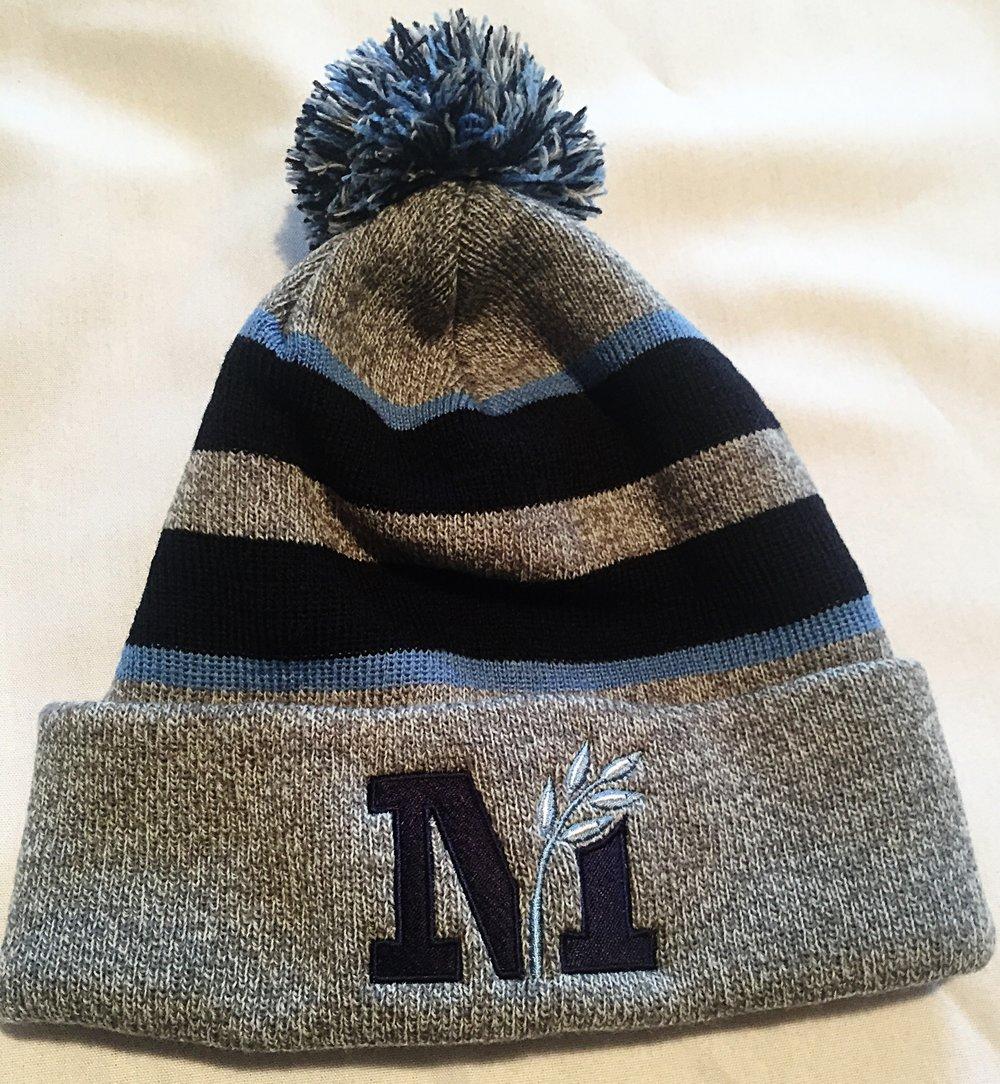 winter hat.jpeg