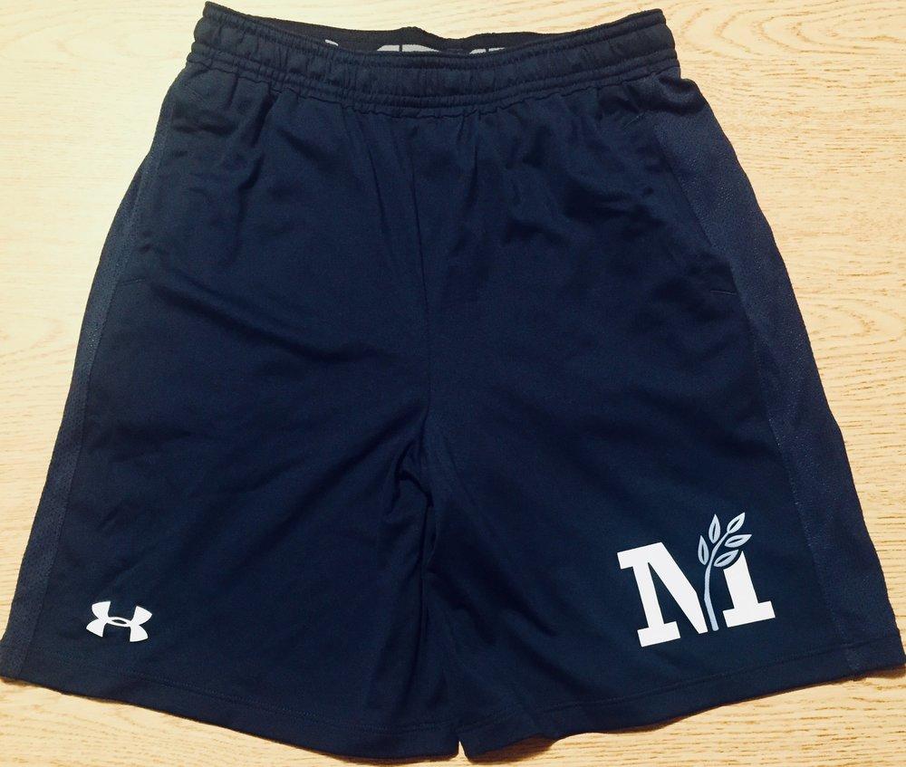 ua shorts.jpg