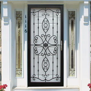 Storm Doors — Richmond Aluminum | Staten Island, NY | Windows ...