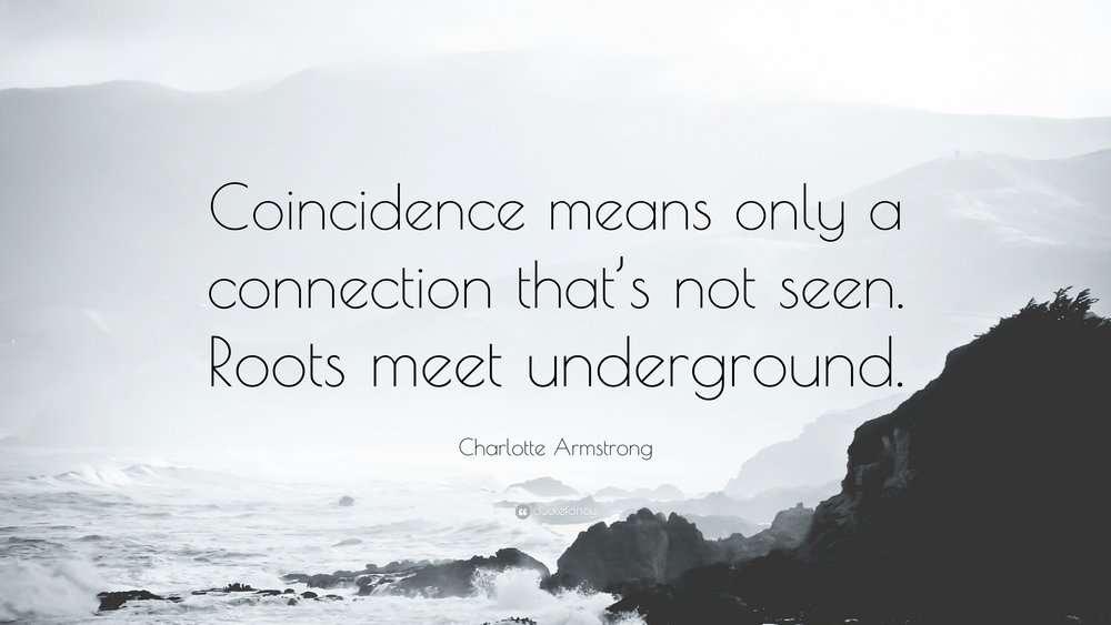 there is nothing coincidental about coincidence. #QuoteMe