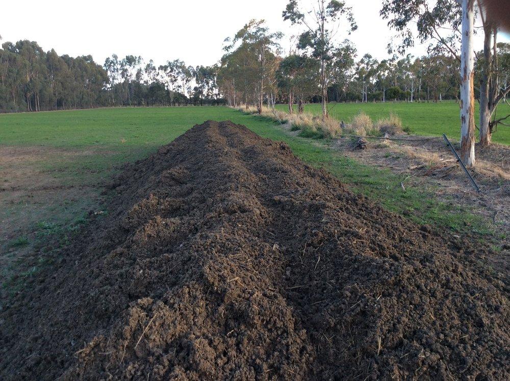 compost heap.JPG