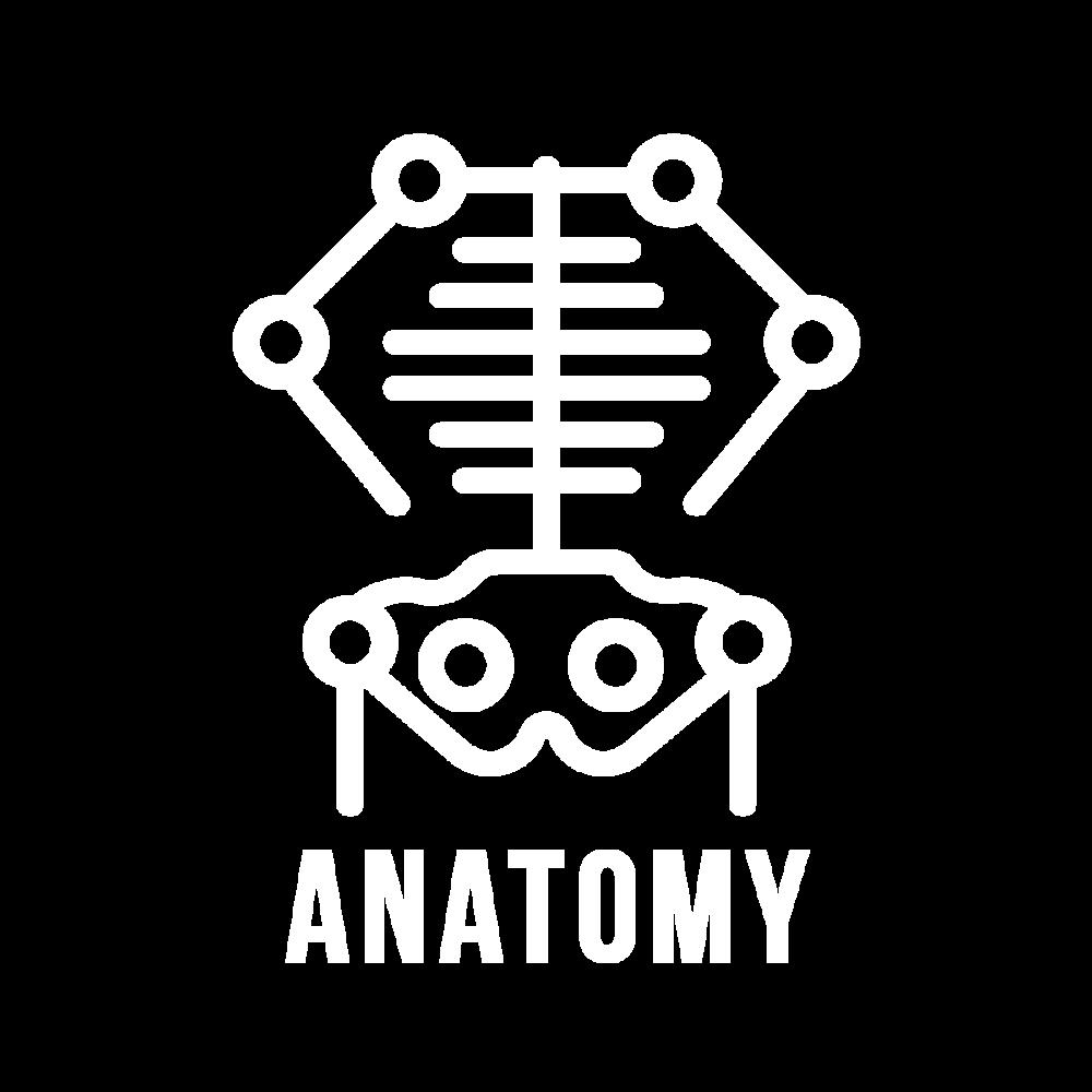 anatomyIcon.png