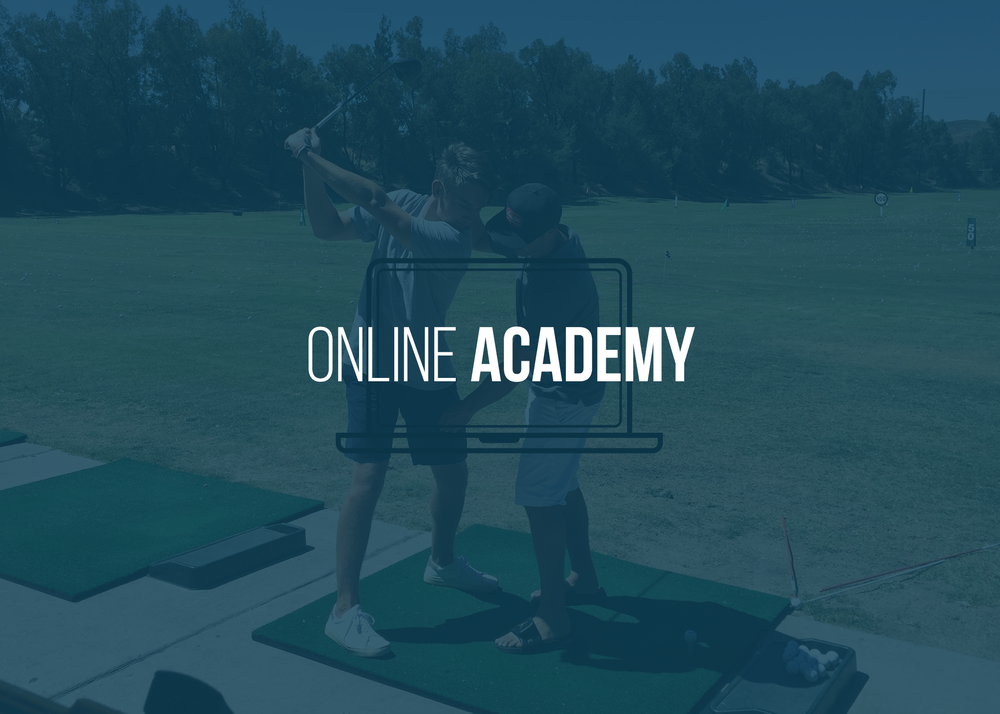 <a href=/online-academy>GO TO ONLINE ACADEMY →</a>