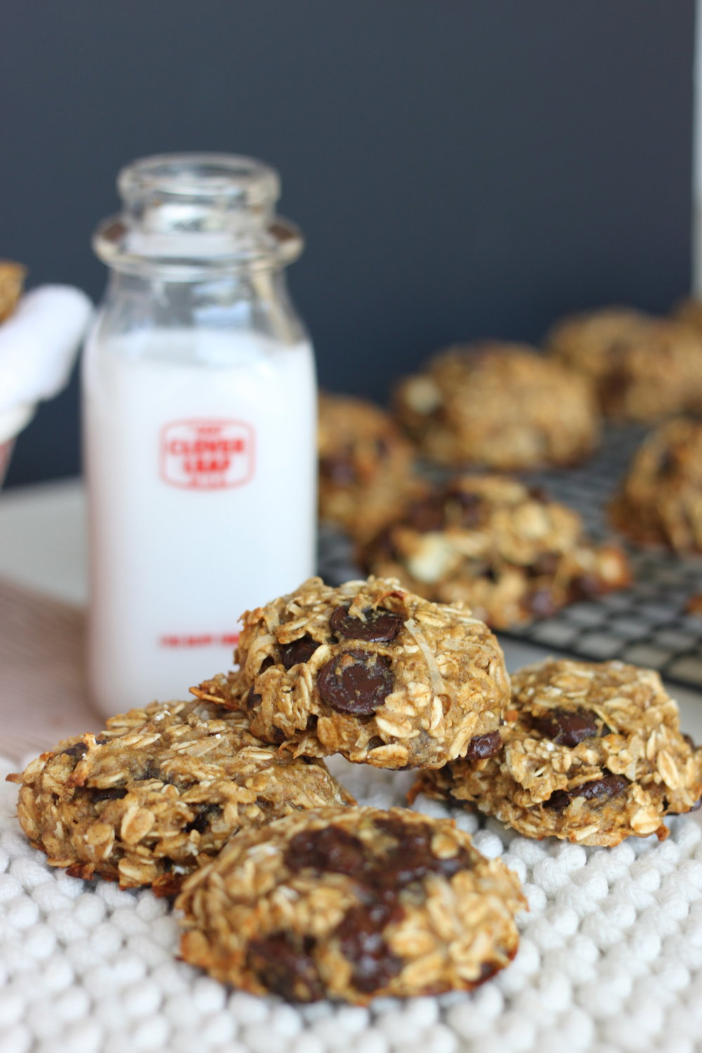 No Bake (Or Bake) Banana Oatmeal Chocolate Chip Cookies from thediva-dish.com