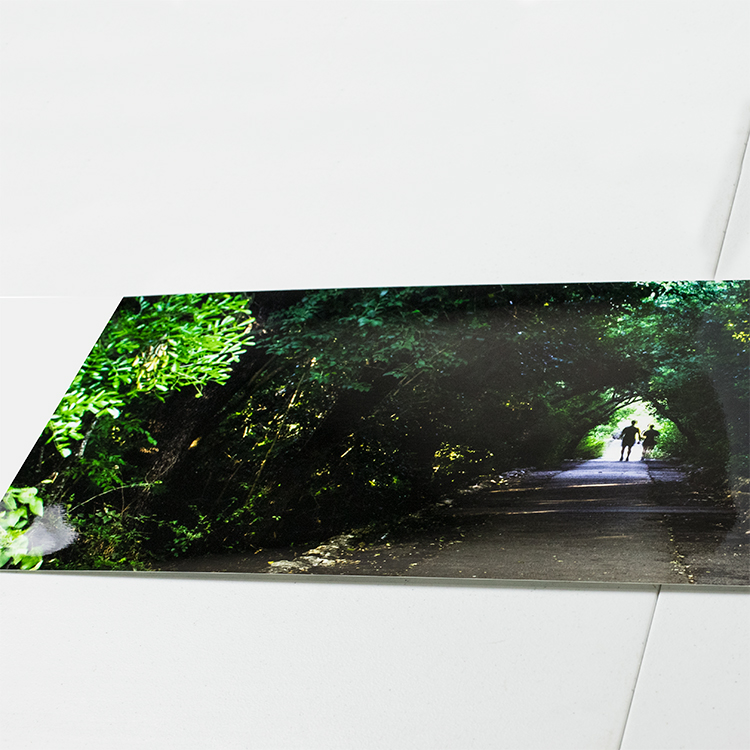 Gloss Prints - For photos that demand bold, vibrant colors that last, our Glossy Prints provide a slick,shiny, and almost wet look that truly pops. They are printed on Kodak Professional Endura Premier Glossy paper.You won't be disappointed!