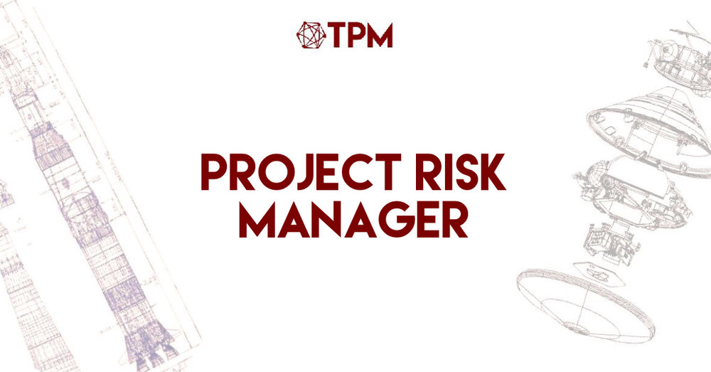 project risk manager small.JPG