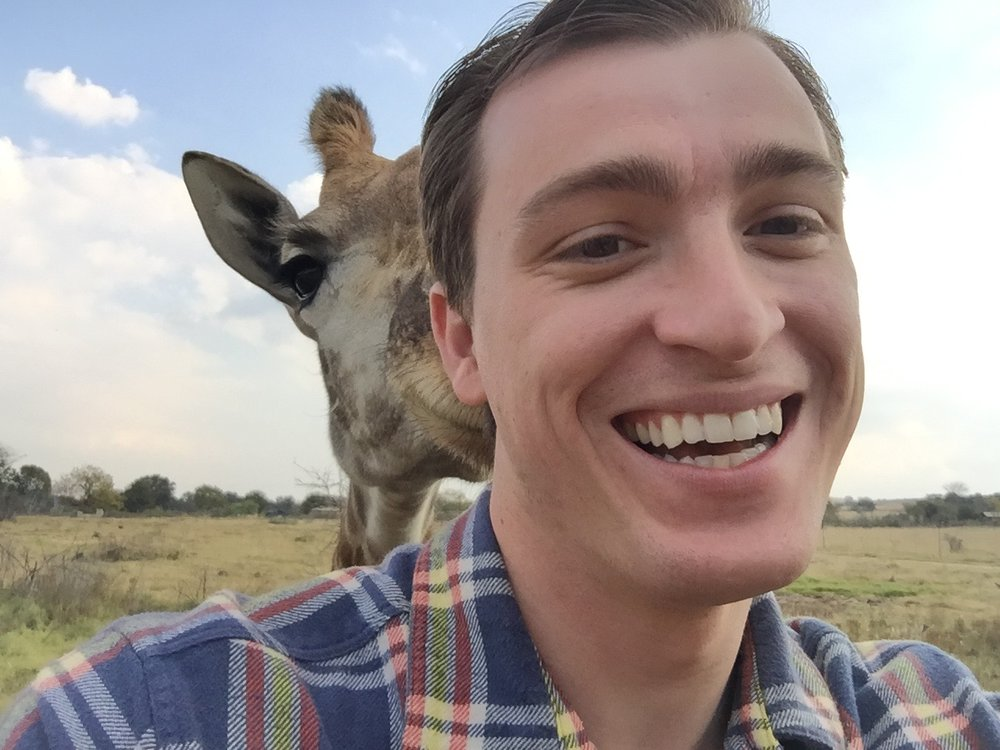 That time I got photobombed by a giraffe.  Gauteng, South Africa - 2016