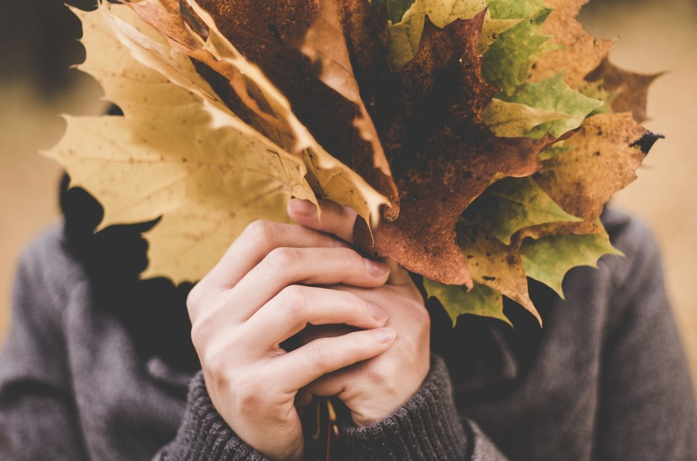 maple-leaves-1030957_1920.jpg