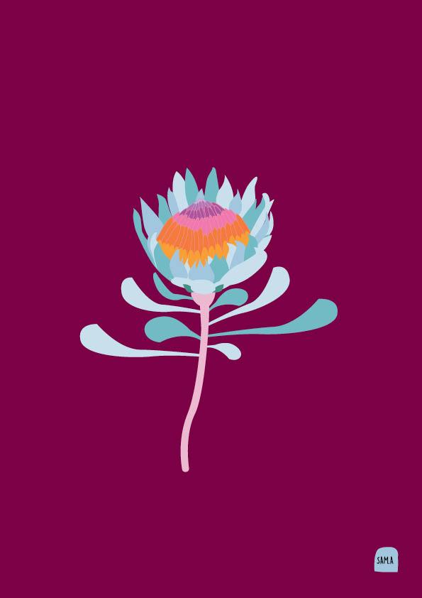 Protea- Susie.jpg