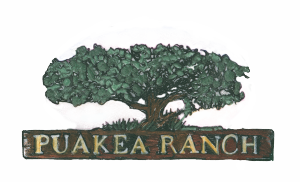Puako-Ranch-Logo-update-300x182.png