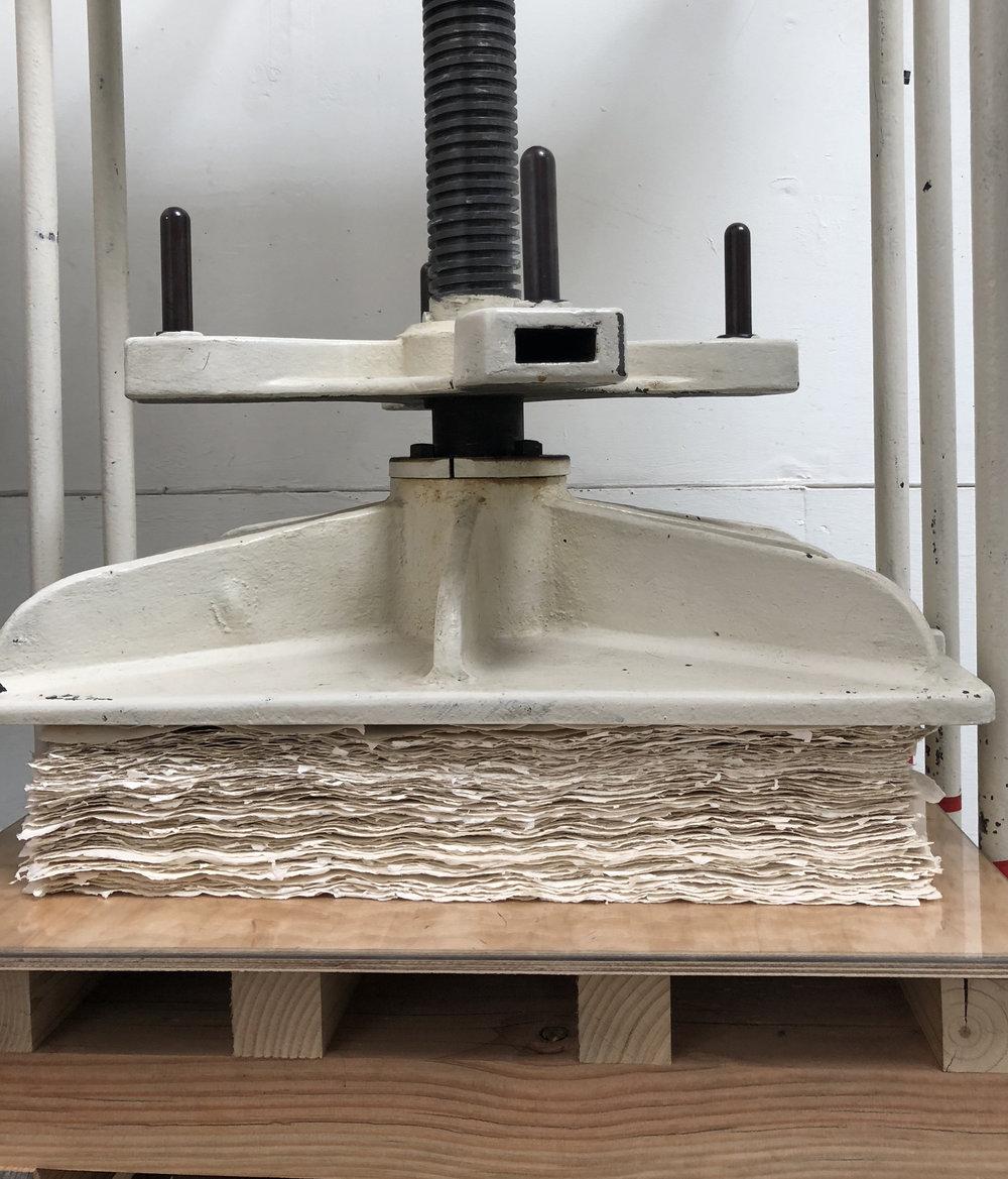 screw press IMG_3789.jpg
