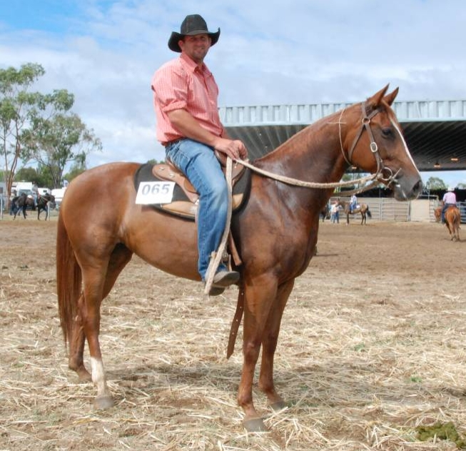 Equal top price 5-year-old mare Oneofakind Nic Of Time, owned by Zane Habermann sold for $40,000 to