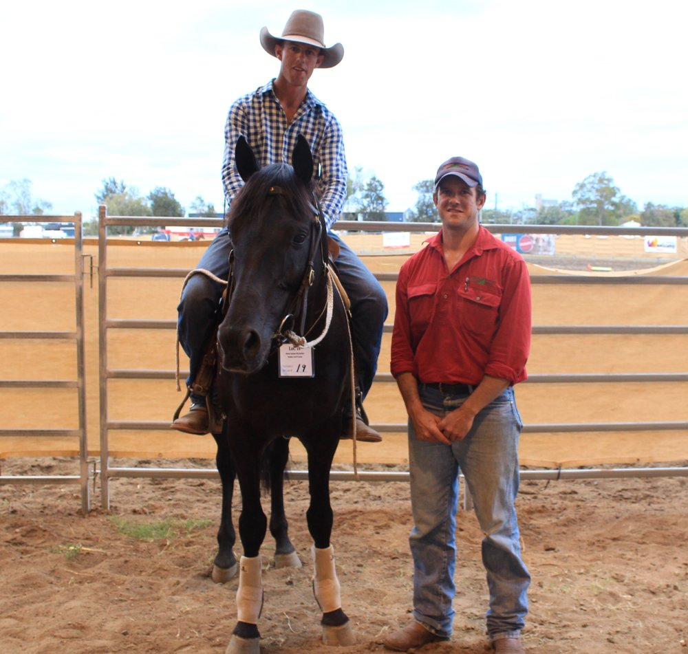 Gatton UQ Justice toped the Stallions at $20,000. Offered by by the Lever family, College View & purchased by Shamil Livestock.