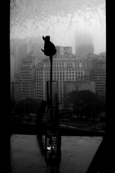 "Cidade (Re)Velada 6, 2011  Black and white digital image Artist's Proof; edition of 15 23.62 x 15.75"" (60 x 40 cm)"
