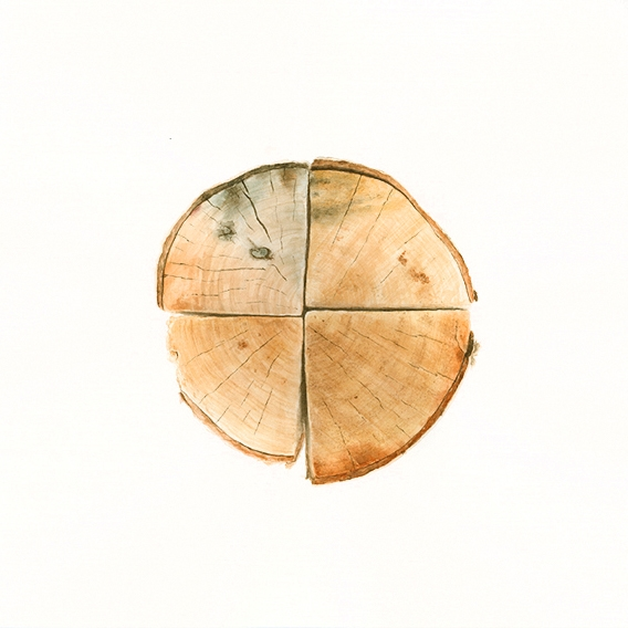 Firewood 32  2014 Watercolor on paper 10.25 x10.25 inches