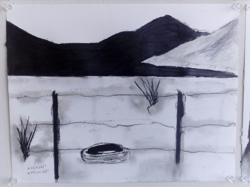 Tulio Pinto, Displaced Four Times, South Drawing, 2015, Acrylic, graphite on paper